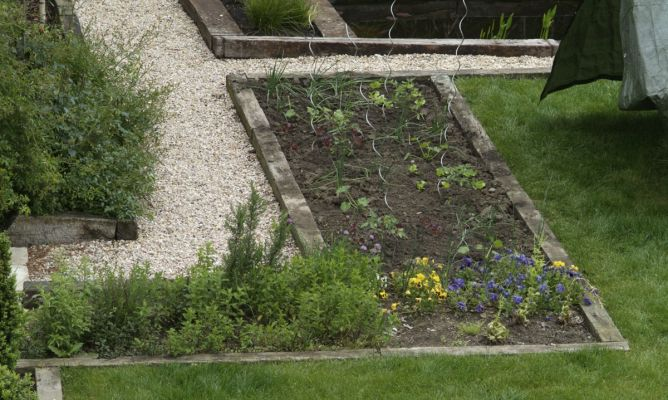 El huerto ornamental bricoman a for Bricomania jardin