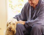 perros terapia ancianos geriátrico