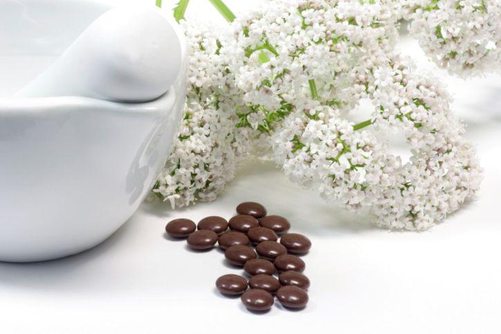 plantas contra el insomnio - valeriana