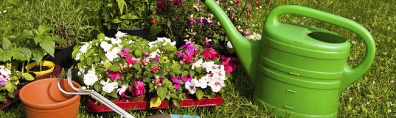 Herramientas y accesorios de jardiner a for Accesorios jardineria