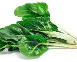 color verde alimentos