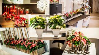 Decoraciones navideñas con Flor de Pascua