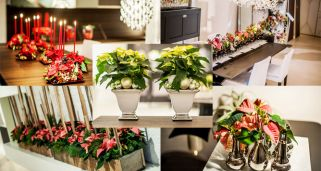 Decoraciones navide�as con Flor de Pascua