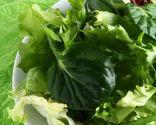Hortalizas y verduras asiáticas