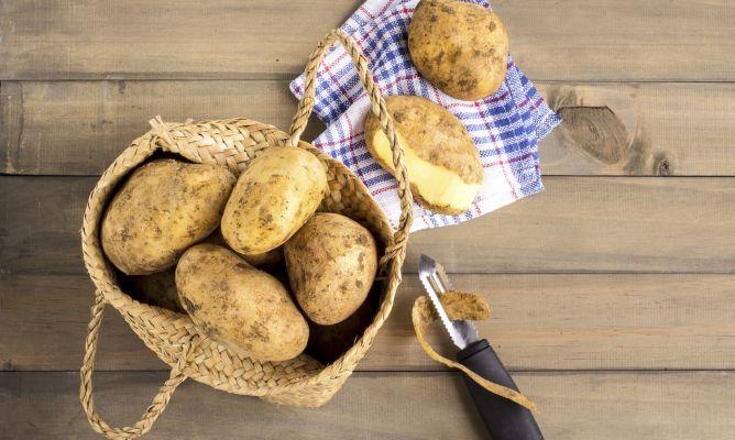 C mo cultivar patatas en macetas hogarmania for Como cultivar patatas