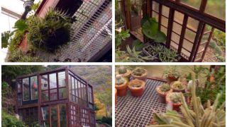 Invernadero construido con ventanas recicladas