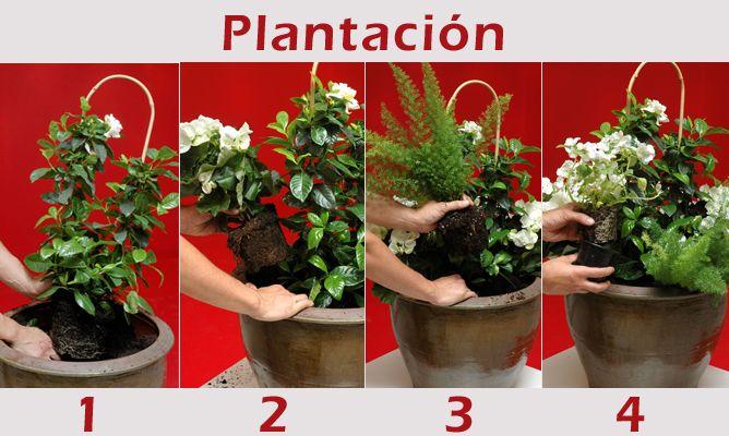 Composición con gardenia en tonos blancos