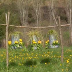 Composiciones florales en tolvas de gallinero