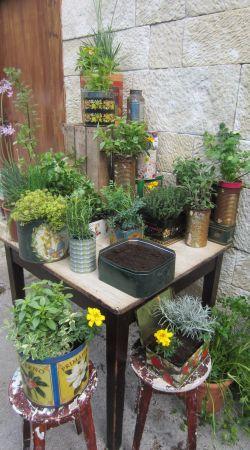 Plantas arom ticas en latas bricoman a for Jardines en lata