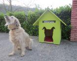 proteger mascota sol - patio