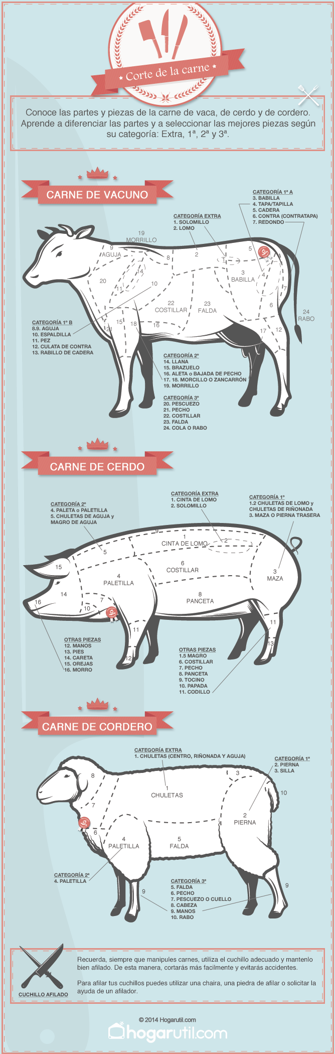 Infografía sobre el corte de la carne de vaca, cerdo y cordero