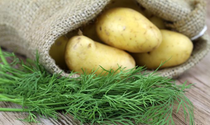 zumo de patata para gastritis