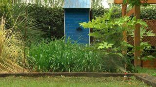 Instalar un riego automático de jardín