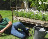 Cama de flores para el jardín