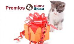 premiso concurso mascotas del mes