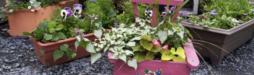 Ideas de jardinería creativa de Iñigo Segurola