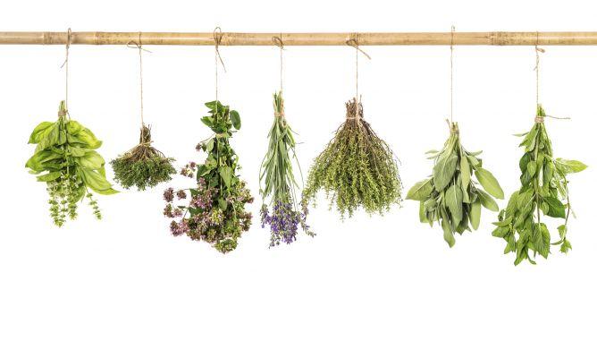 12 hierbas arom ticas imprescindibles para cocinar - Plantas aromaticas en la cocina ...