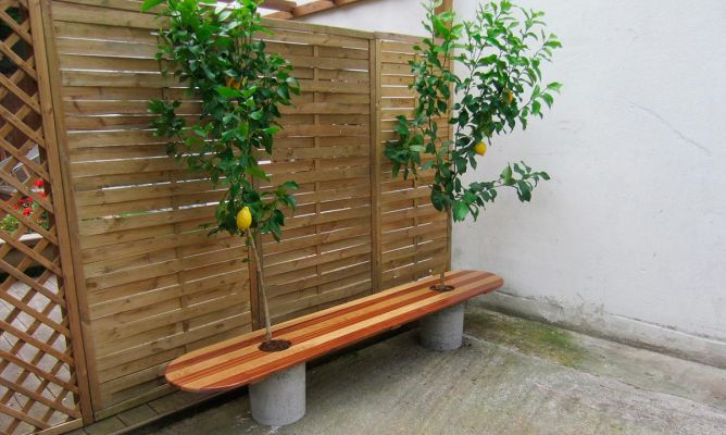 Asiento limonero bricoman a for Bricomania jardin