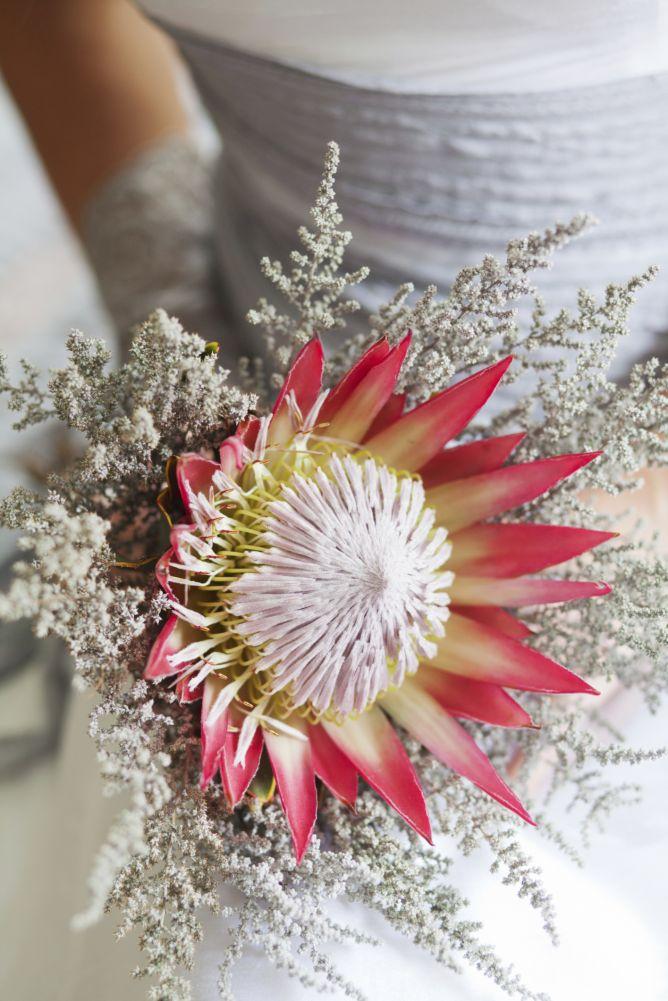 Ramo de novia con protea