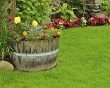 Decoración exterior original con plantas