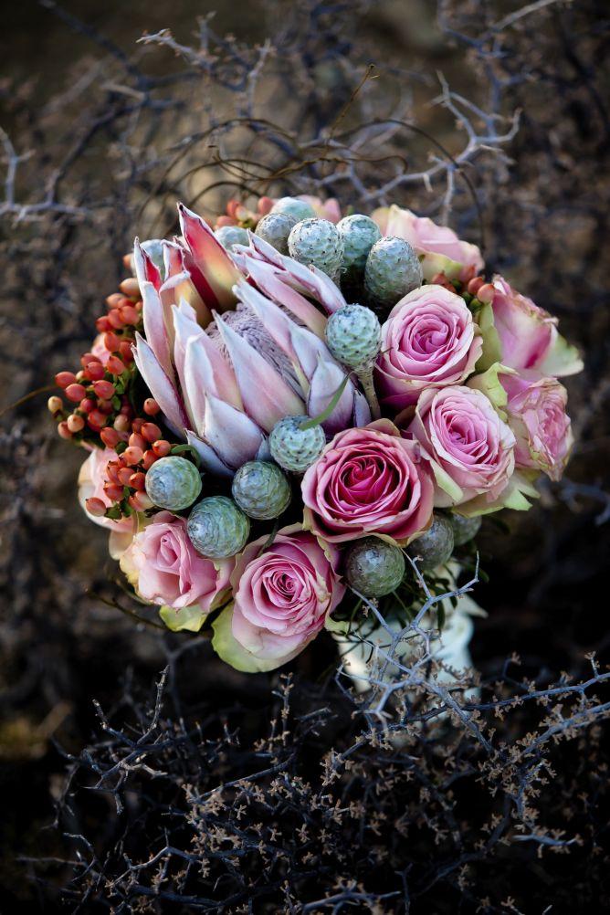 Ramo de protea