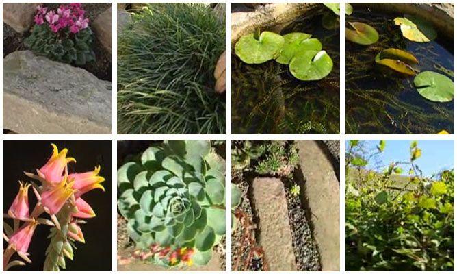 Ideas para jardines con muros de piedra