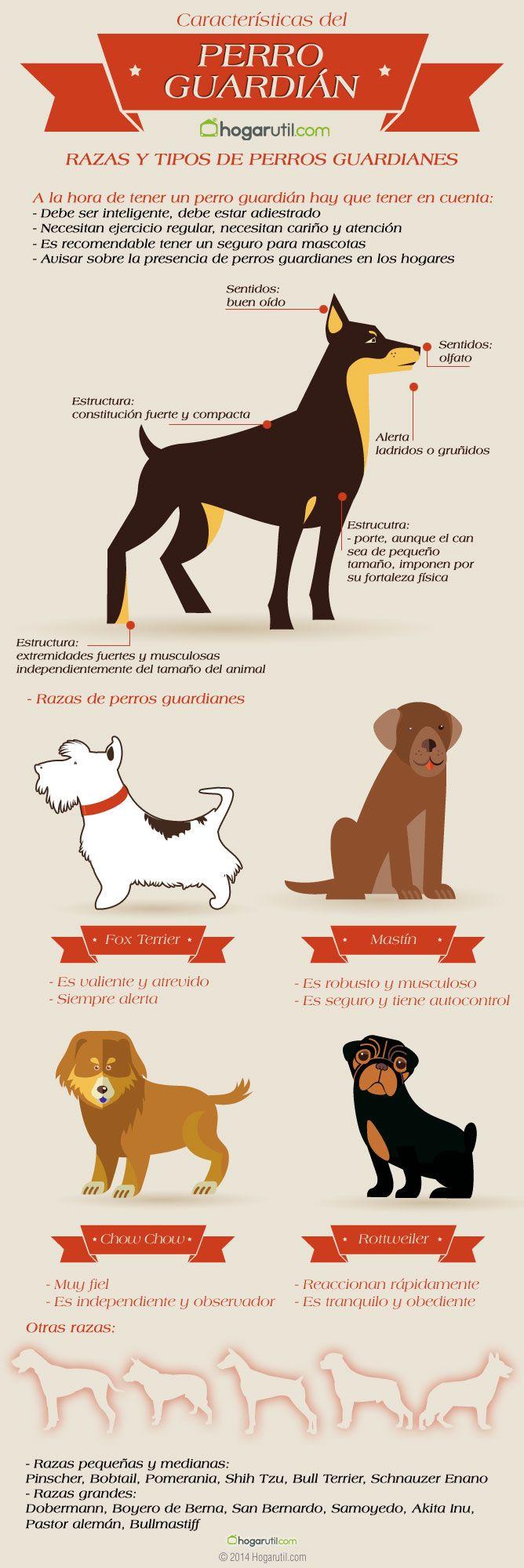 Infografía sobre perros guardián