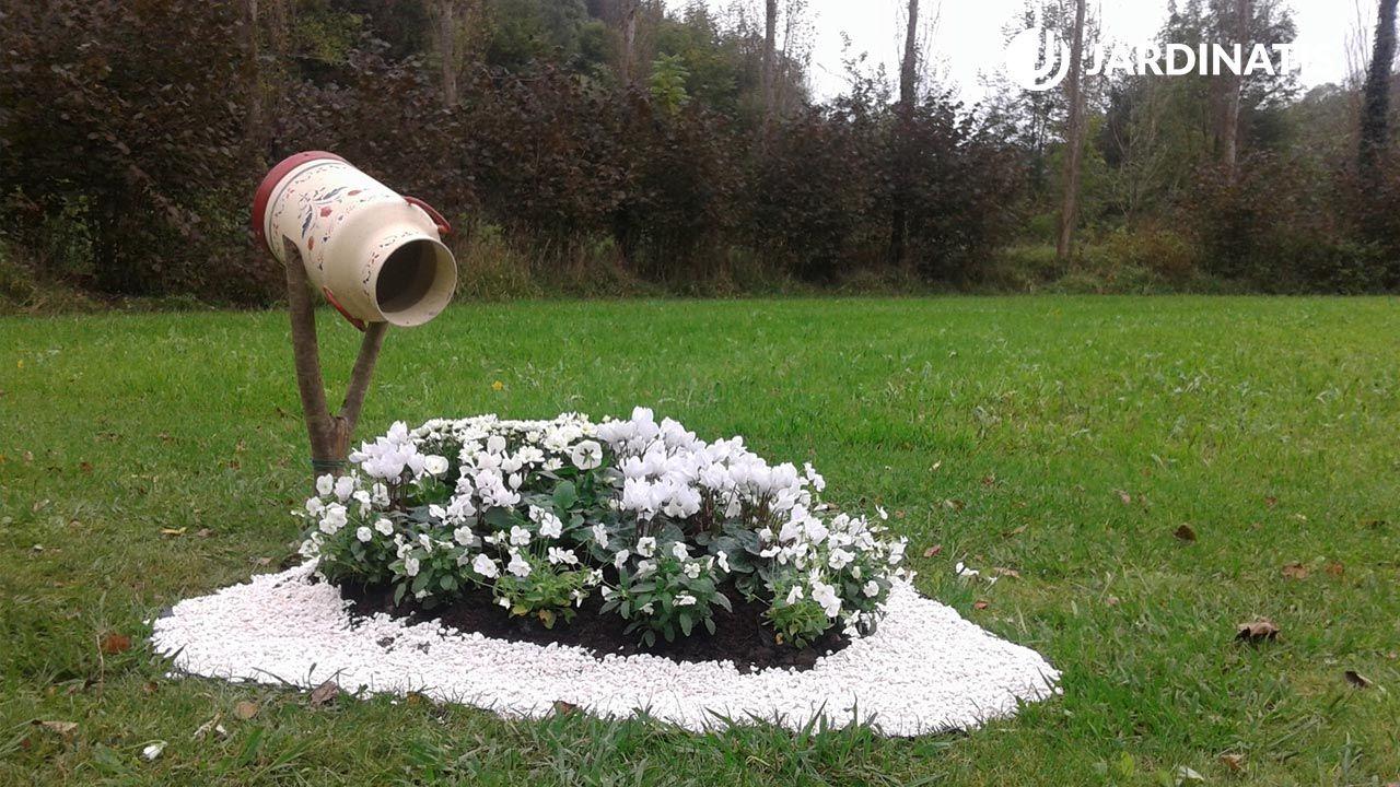 Decoración de jardín con plantas de flores blancas y marmita
