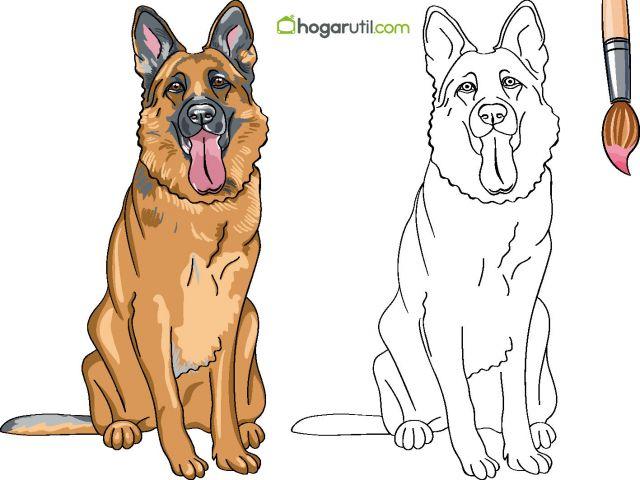 Dibujos De Perros Para Colorear Labrador Retriever