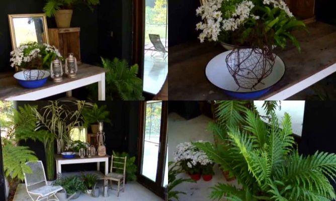 Decorar una entrada sombr a con plantas decogarden - Decorar una entrada estrecha ...
