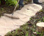 Camino de jardín con círculos de madera