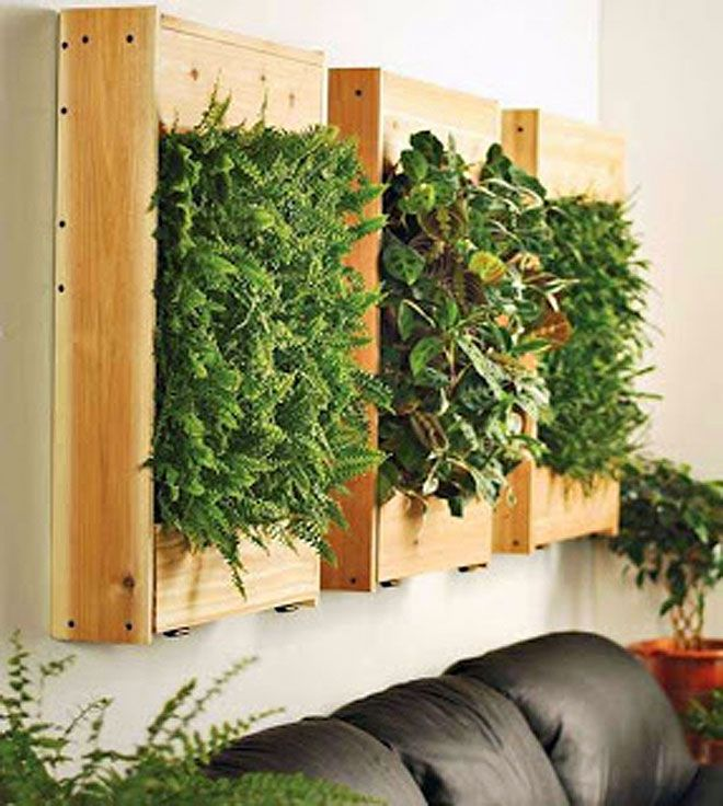 jardines vegetales para decoracin interior
