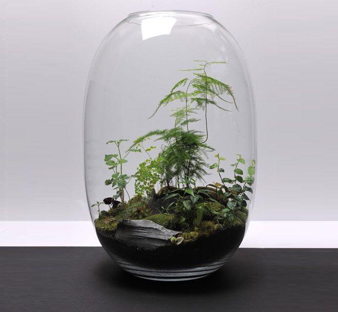 Jardines vegetales para decoración interior