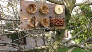 Comedero de pájaros con latas de comida