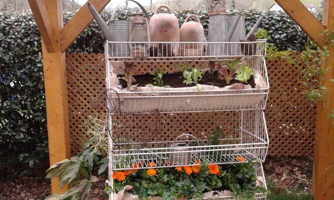 Jardín vertical reutilizando un frutero - Jardinatis