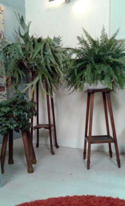 Pedestales para las plantas bricoman a - Pedestal para plantas ...