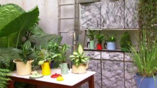 Composición floral colorista para la cocina