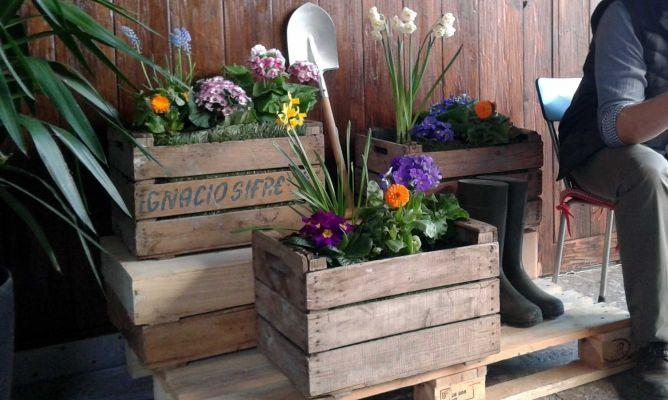 Jardineras con cajas de fruta bricoman a - Jardineras de madera caseras ...