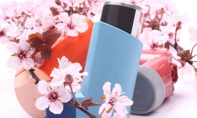Plantas curativas para alergias piel