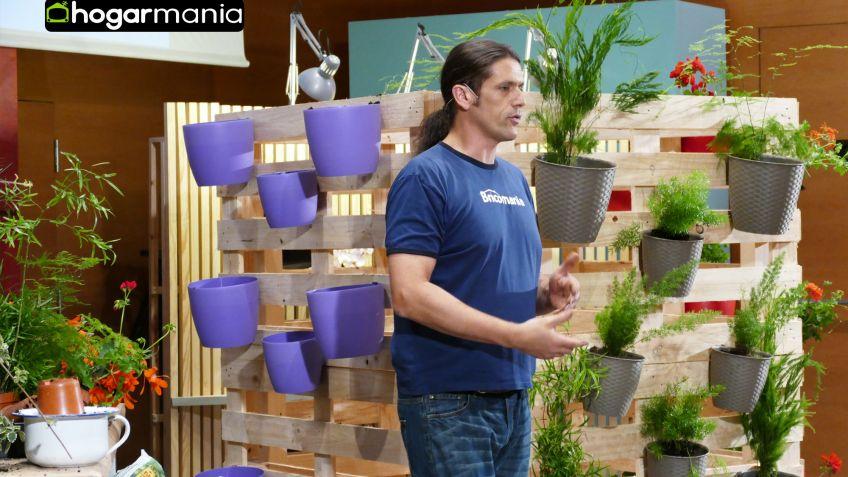 iigo segurola crea un jardn vertical decogarden - Bricomania Jardineria