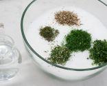 Paso 1: Mezclar la sal con las hierbas y humedecer