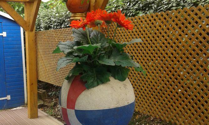 Hacer macetas con balones de baloncesto bricoman a - Bricomania jardineria ...