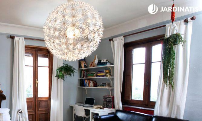 Plantas colgantes para decorar habitaciones clásicas y modernas ...