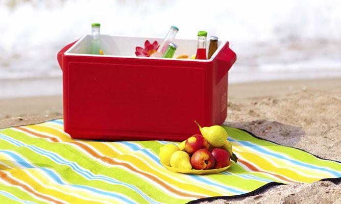 Comida para llevar a la playa recetas f ciles hogarmania - Comida para llevar de picnic ...