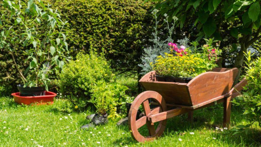 decorar el jardn con carretillas con plantas