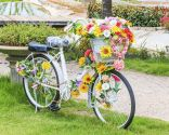 bicicletas decorar exterior