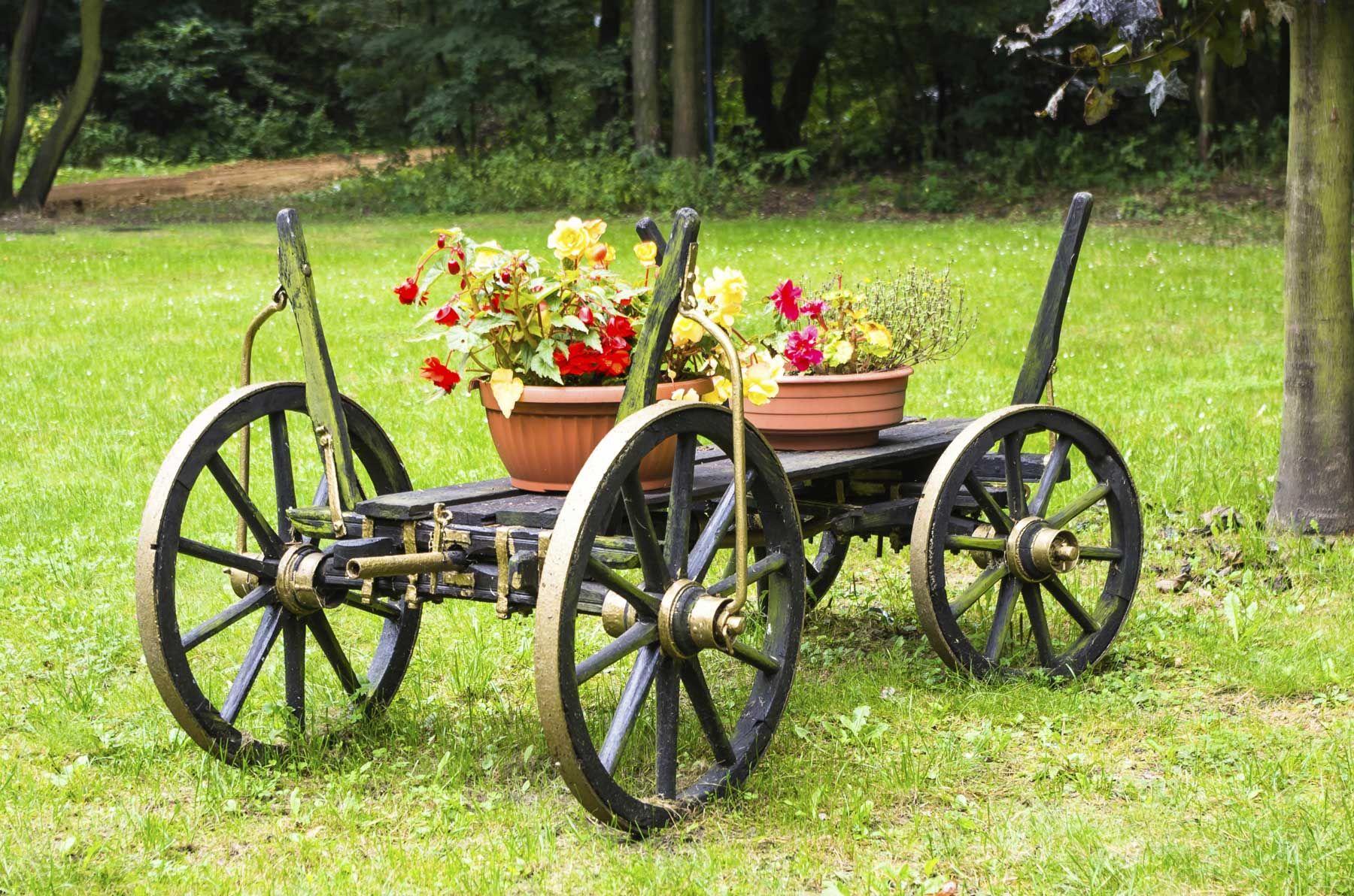 Carros para decorar jardines