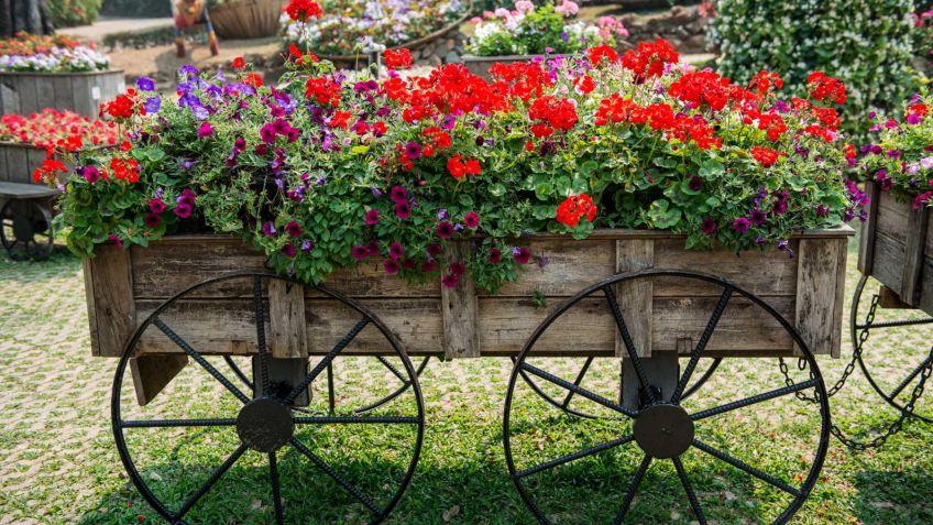 Carros para decorar jardines hogarmania for Decoracion de jardines fotos