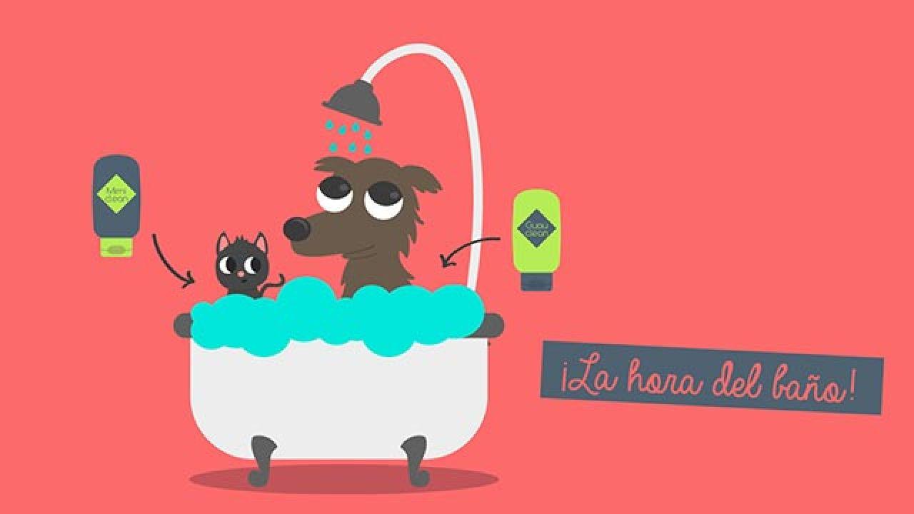 Infografía baño mascotas