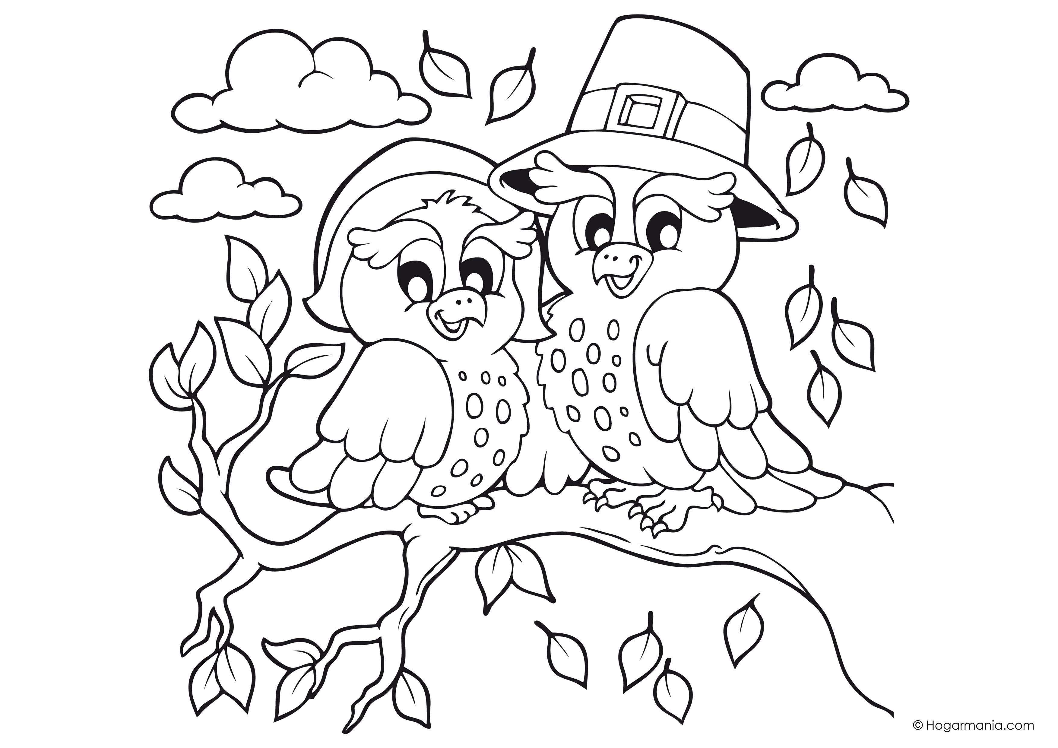 Dibujos De Otoño Para Colorear Búhos